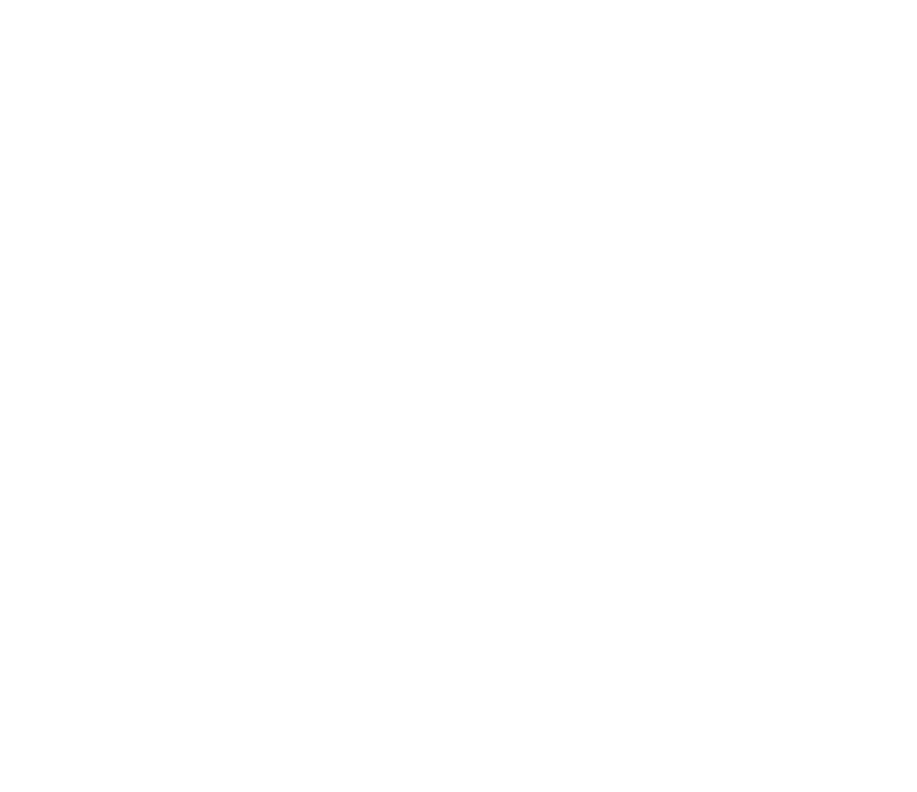 Chimney Inspection Home Inspector Icon