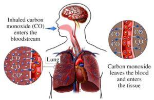 Inhaled Carbon Monoxide Diagram