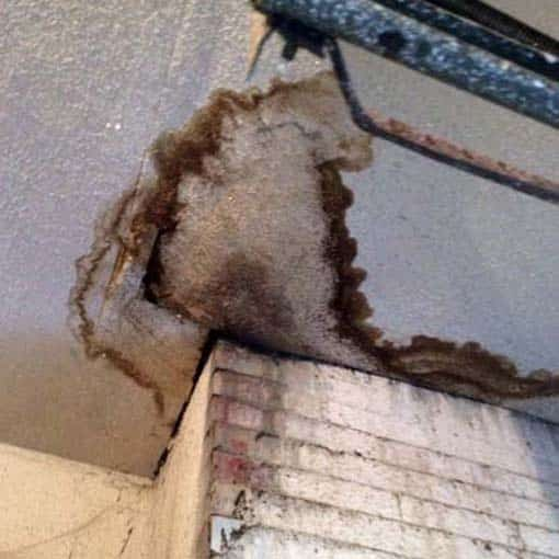 Chimney Leaks Can Cause Water Stains on Ceilings