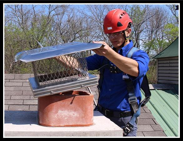Professional Technician Inspecting Chimney