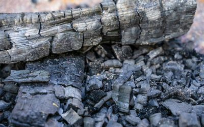 10 Fantastic Uses for Fireplace Ash